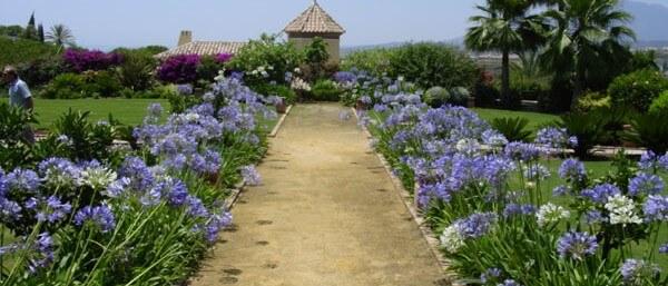 C mo abrir una empresa de jardiner a podadores y vivero for Empresas de jardineria